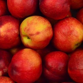 """red apples - imagery for """"Apple"""" by Chance Dibben"""