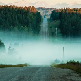 foggy landscape - image for Still by Paul Beckman