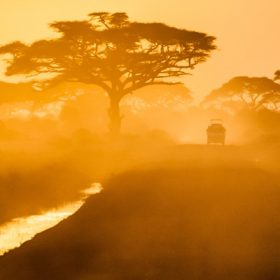 African road - image for Animals by J M Jackson
