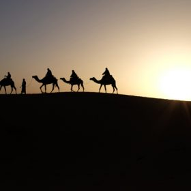 A caravan of camels on the horizon - image for Bedouin by Sneha Subramanian