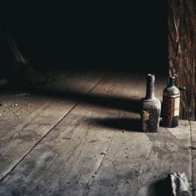 attic floor - image for Bullet Goose by Erik Fuhrer