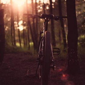 bicycle in the woods - image for Depending on the Horizon by Cate McGowan