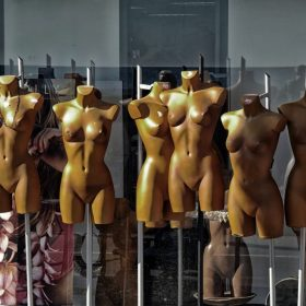 a collection of naked mannequin torsos